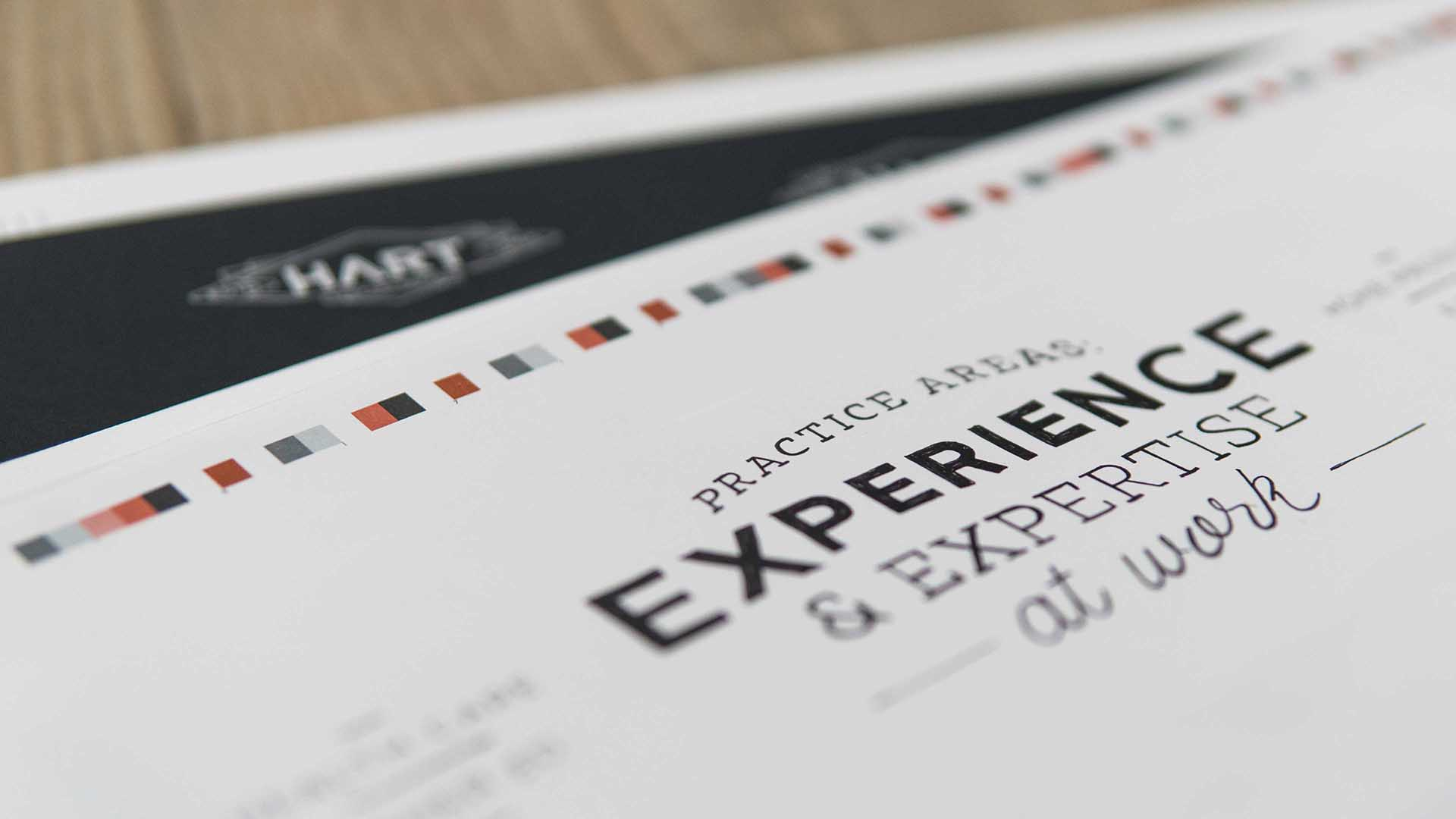Practice Area's Experience and Expertise print