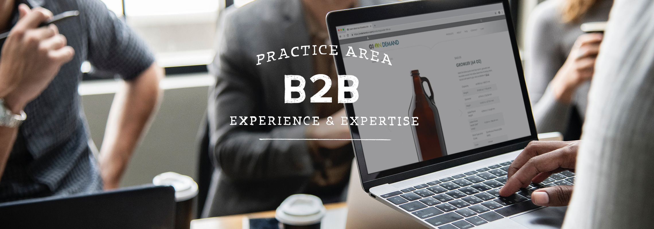 B2B Practice Area, Experience and Expertise